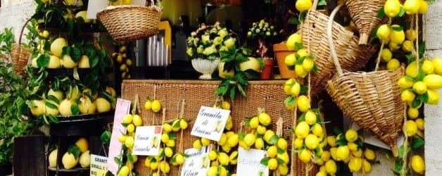 Lemons and Limoncello on the Sorrento Peninsula