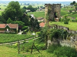 The village of Saint Emilion is surrounded by 1,000 vineyards