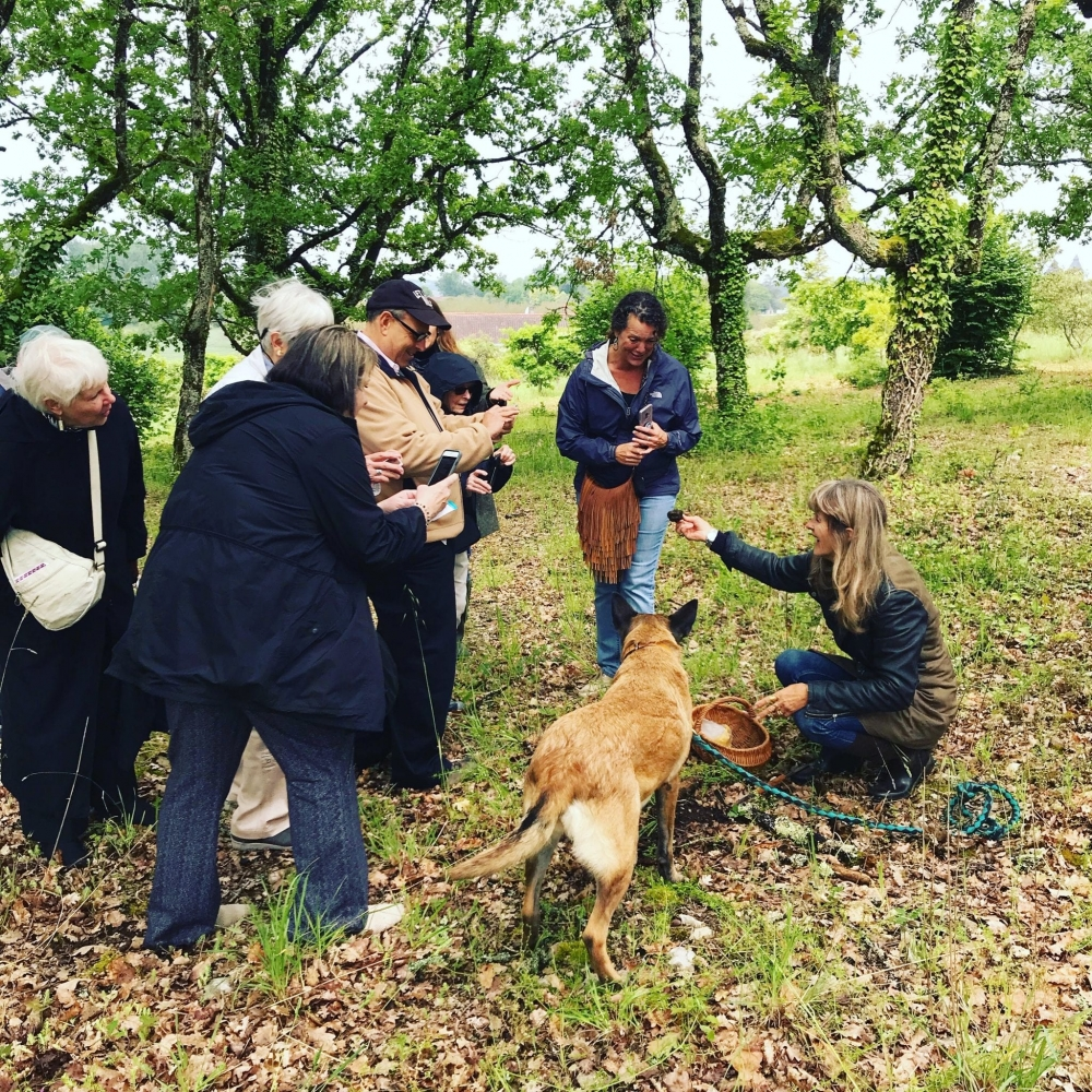 Hunting for truffles in the Perigord